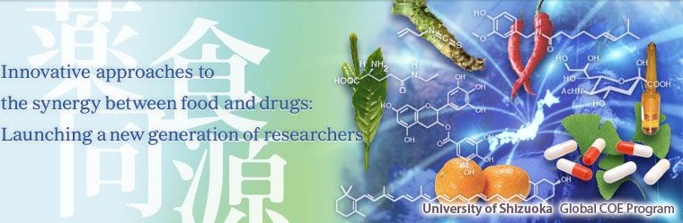 Innovative approaches to the synergy between food and drugs:Launching a new generation of researchers
